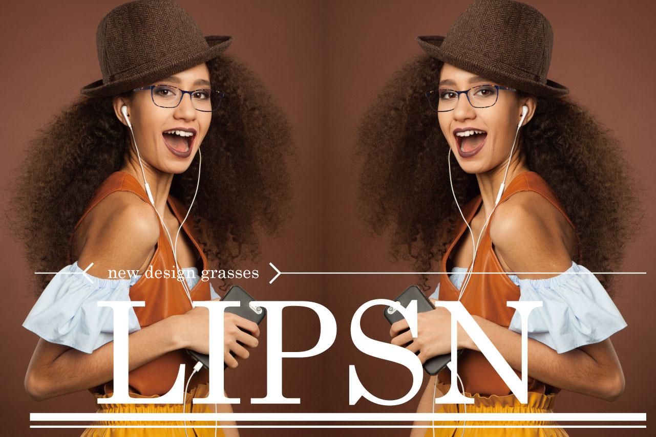 リプスン モデル画像